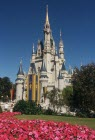 Disney Castle web.jpg